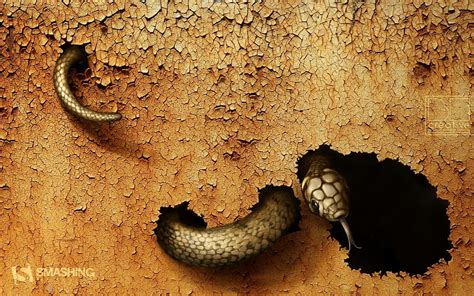 dangerous snake wallpapers hd wallpapers id