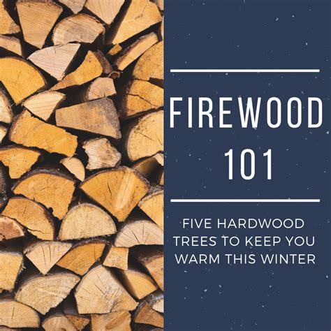 types  hardwood trees    firewood oak
