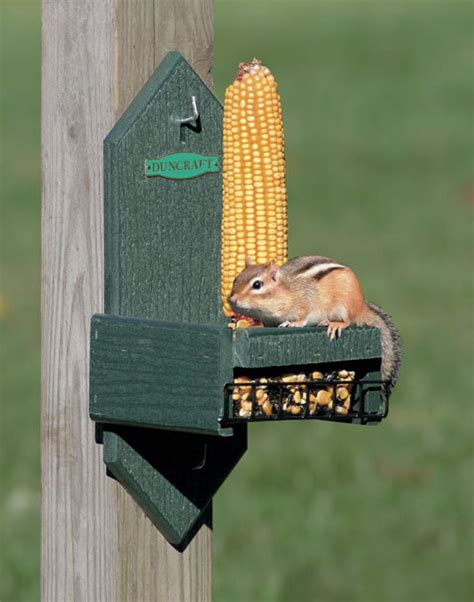 squirrel feeder lawn chair duncraft duncraft 4078 eco squirrel corn seed chair