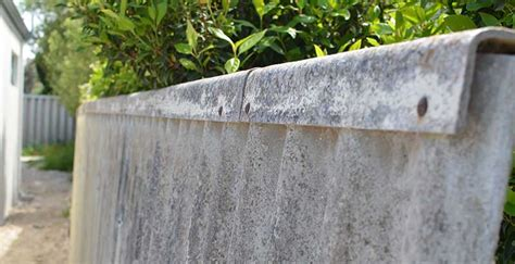 asbestos fence removal experts   beat  written