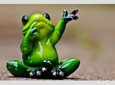 Frog Wave Farewell · Free photo on Pixabay