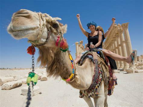 reisewarnung vorsicht vor corona virus bei kontakt mit kamelen