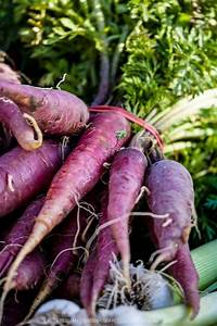 19 best images about The Purple Gardener~ on Pinterest ...
