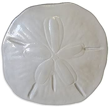 """This decorative sand dollar piece was sculpted in stone by a friend of mount this fish company and we now have it available as a superior nautically themed fiberglass decorative wall reproduction. Amazon.com: Large 17"""" Sand Dollar Plaque Sea Shell Wall Art: Home & Kitchen"""
