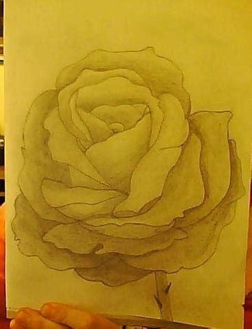 ist diese rose gut gezeichnet bilder kunst zeichnen