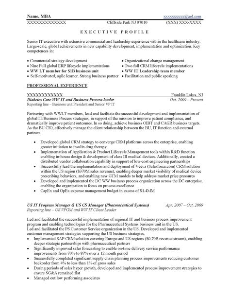 Business Process Resume by Executive Resume Sles Resume Prime