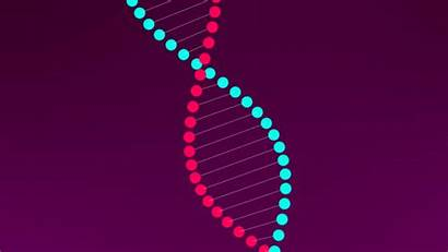 Dna Helix Double Effects Script Touch Button