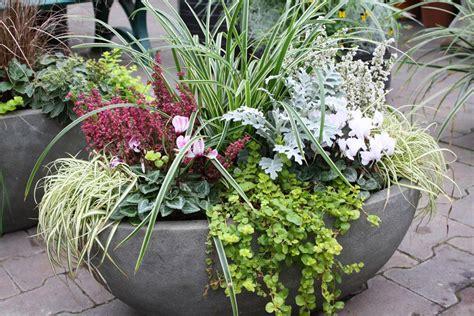Herbstliche Blumenkästen Und Kübel