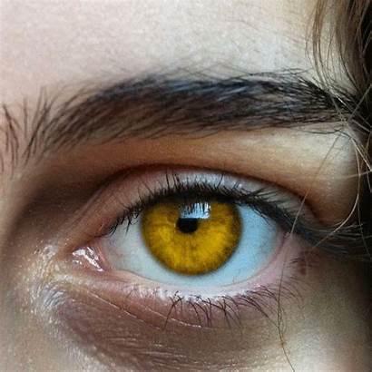 Eyes Yellow Eye Aesthetic Pretty Makeup Rare