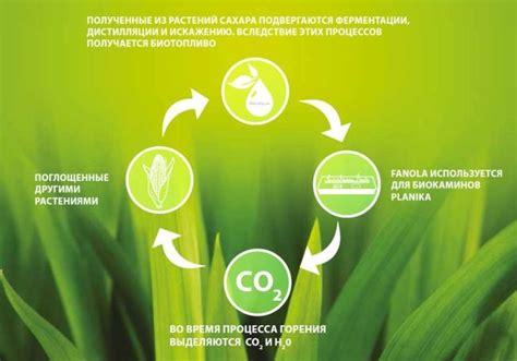Биотопливо своими руками из навоза и не только для каминов парников и автомобилей . Slark Energy интернетжурнал об альтернативной энергии