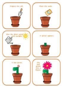Flower of Life Cycle Preschool Printable