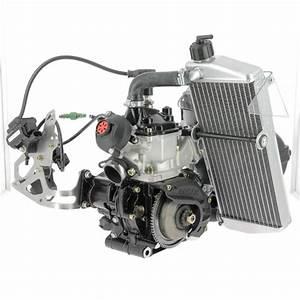 Karting A Moteur : moteur rotax 125 max evo challenge rotax action ~ Melissatoandfro.com Idées de Décoration