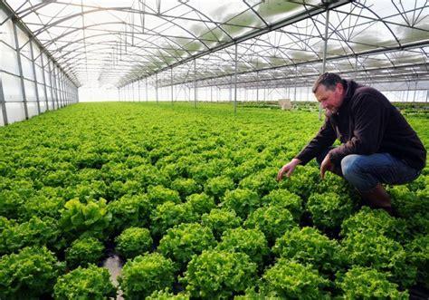 chambre d agriculture du tarn après le gel les calamités 22 02 2012 ladepeche fr