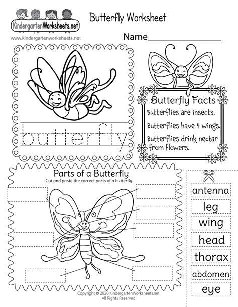 butterfly worksheet  kindergarten learning worksheet