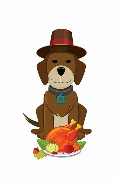 Thanksgiving Dog Clipart Happy Dogs Animal Background