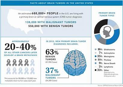 Brain Tumor Tumors Facts Cancer Awareness Type