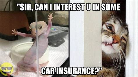 Hilarious Insurance Memes That We Can All Relate To