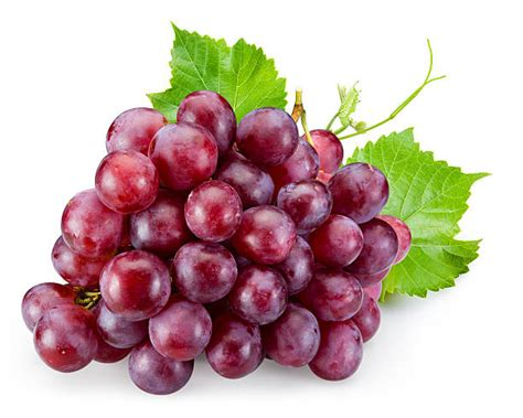 Best Grape Stock Photos Pictures And Royalty Free Images