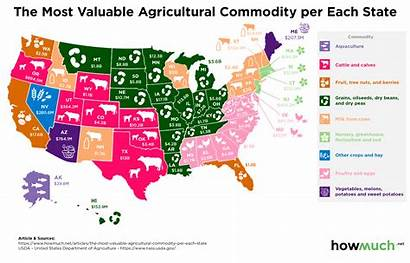 State Agricultural Each Map Commodity Agriculture Production