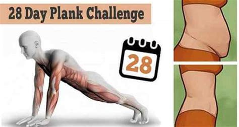 planking to lose weight planking challenge to lose stubborn belly fat in just 4