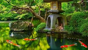 Japanese HD Background, Picture, Image