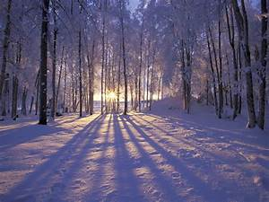 Beautiful Christmas pictures and graphics, free to enter ...