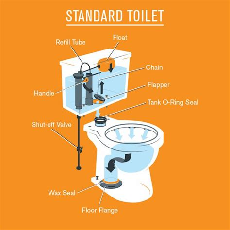 Parts Of A Water Closet by Overview Of The Parts Of A Toilet