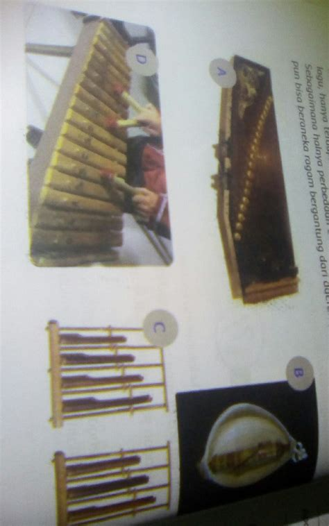 Polopalo merupakan jenis musik idiofon yang menghasilkan bunyi ketika dibenturkan. Alat Musik Sasando Berasal Dari Daerah Brainly - Berbagai Alat