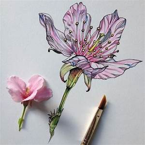 Flower Art Pictures, Photos, and Images for Facebook ...