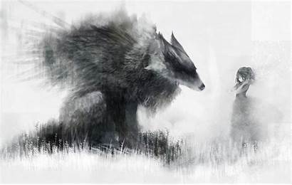 Wolf Wolves Desktop Pixiv Wallpapers Anime Hood