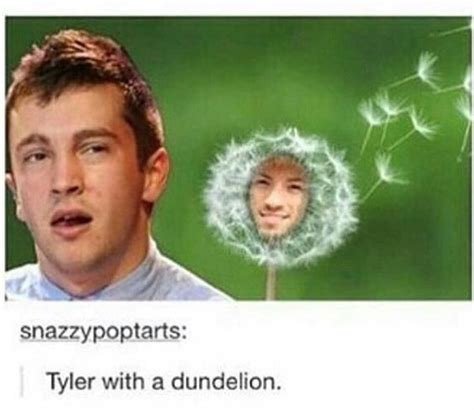 Josh Dun Memes - oh my josh i m so dun with this twenty 216 ne pil 248 ts pinterest love this love and i love