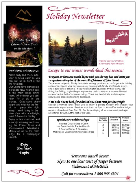 holiday newsletter newsletter template 5 free templates in pdf word excel