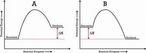 Potential Energy Diagrams
