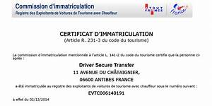 Atout France Vtc : documents dst driver secure transfer ~ Medecine-chirurgie-esthetiques.com Avis de Voitures