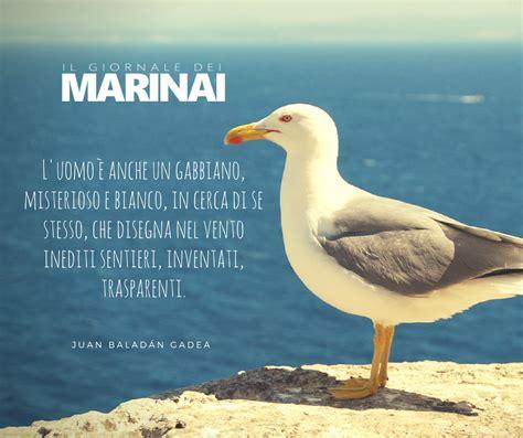 Frasi Sul Gabbiano Frasi E Citazioni Sul Mare