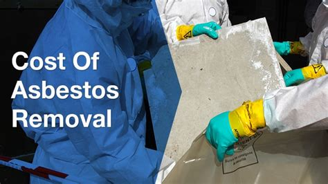 asbestos removal costs  practical guide  square metre