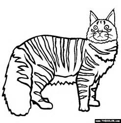 Maine Coon Cat Coloring Pages
