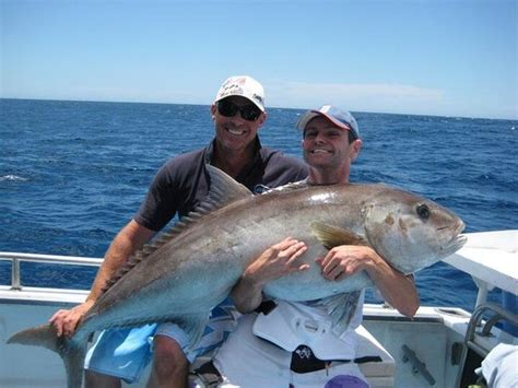 Boat Service Joondalup by Samson Jigging Perth Picture Of Saltwater Charters Wa