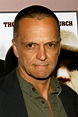 James Russo Pictures and Photos | Fandango
