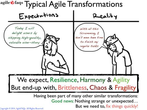 expert agile scrum programming and lean coaching