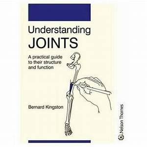 Understanding Joints  A Practical Guide To Thei  Kingston