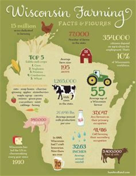 1000 images about corn on pinterest farmers