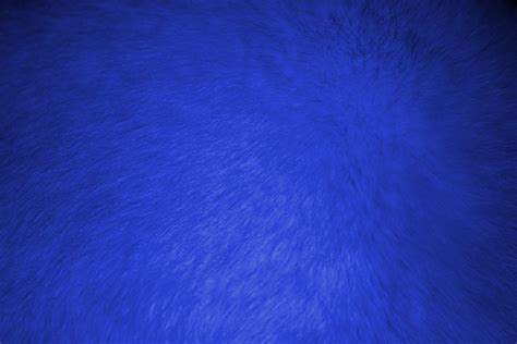 blue fur wallpaper gallery
