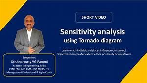 Sensitivity Analysis Using Tornado Diagram