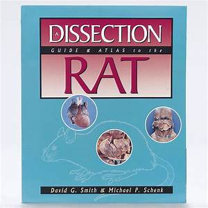 A Dissection Guide And Atlas To The Rat Book