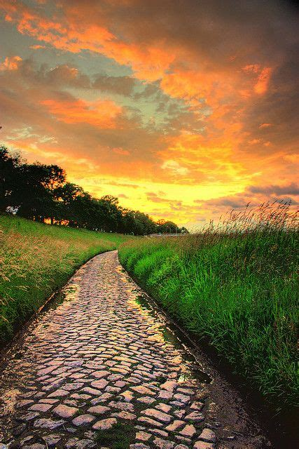 Golden Sunset Over Cobblestone Path Dminkus