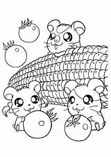 Coloring Kawaii Pages Animal sketch template