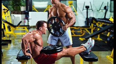 weighted bench dip 3 triceps exercises for explosive growth building