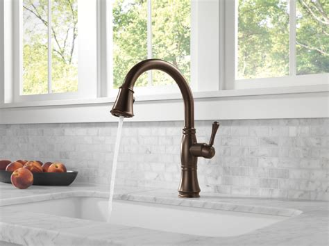Delta Faucet Cassidy 9197 by Delta 9197 Rb Dst Cassidy Single Handle Pull Kitchen