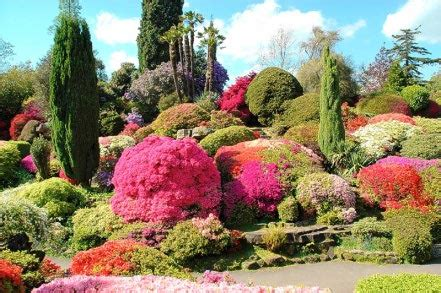 expensive garden plants world s most expensive gardens